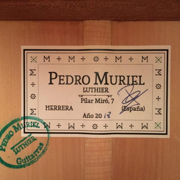 Pedro Muriel 2018 05 3